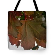 Maple 2 Tote Bag
