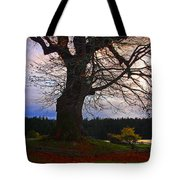Maple Evening Tote Bag