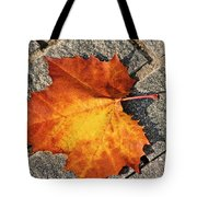 Maple Leaf In Fall Tote Bag