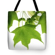 Maple Leaves And Seeds Tote Bag