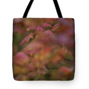 Maple Leaves Are Bright Red On A Rainy Tote Bag
