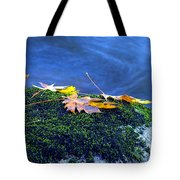 Maple Leaves On Mossy Rock Tote Bag