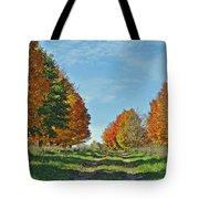 Maple Tree Lane Tote Bag