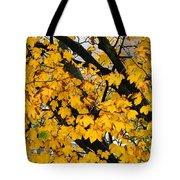 Maple Tree Panorama Tote Bag