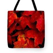Maples Tote Bag