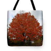 Maples In The Meadow Tote Bag