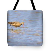Marbled Godwit Searching For Food Tote Bag