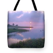 Marsh At Sunrise Over Eagle Bay St Tote Bag by Tim Fitzharris