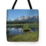 marsh Flowing to Lake Tahoe Tote Bag