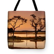 Marsh Morning Tote Bag