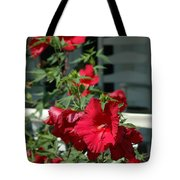 Martha's Vineyard Red Hibiscus And Porch Tote Bag