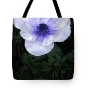 Mascara And Lace Anemone Tote Bag