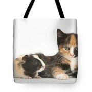 Matching Kitten & Guinea Pig Tote Bag