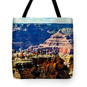Mather Point Tote Bag