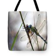 Mating Dragonflies  Tote Bag