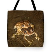 Mating Toads Tote Bag