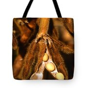 Mature Soybeans Tote Bag by Science Source