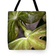 May Apple Tote Bag
