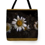 May Evenings Tote Bag