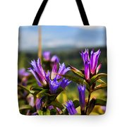 Meadow And Mountains Tote Bag