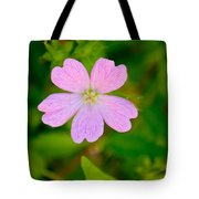 Meadow Checker Mallow Tote Bag