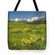 Meadow Landscape Tote Bag