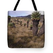 Meadows And Groundsel Trees, Mt Tote Bag
