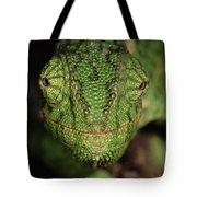 Mediterranean Chameleon Chamaeleo Tote Bag