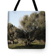 Mediterranean Wood Wiew Tote Bag