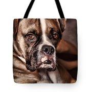 Meet Rocky Tote Bag by Deborah Benoit
