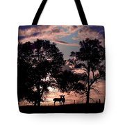 Meeting In The Sunset Tote Bag