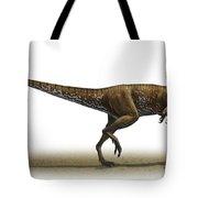 Megapnosaurus Kayentakatae Tote Bag