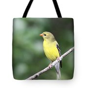 Mellow Lady Tote Bag