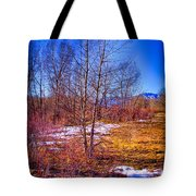 Melting Snow In South Platte Park Tote Bag