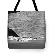 Mendenhall Glacier Bw Tote Bag