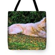 Menominie Park Grey Wolf Tote Bag