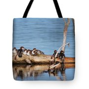Merganzers Hanging Out Tote Bag