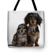 Merle Dachshund And Doxie Doddle Pup Tote Bag