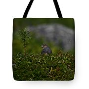 Merlin Grounded Tote Bag