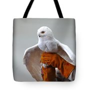 Message Snowy Owl Tote Bag