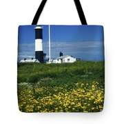 Mew Island, County Down, Ireland Tote Bag