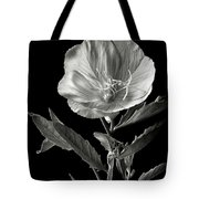 Mexican Evening Primrose In Black And White Tote Bag