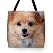 Mi-ki Puppy Tote Bag by Angie Tirado
