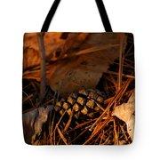 Michigan Golden Sunset Pine Cone Tote Bag