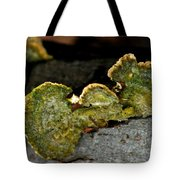 Michigan Jade Fungus Tote Bag