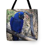 Midnight Blue Tote Bag