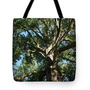 Mighty Oak Tote Bag