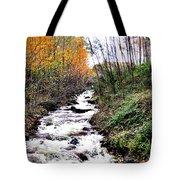 Mile Long Rapids Tote Bag