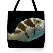 Mimic Saddle Puffer Tote Bag by Dant� Fenolio