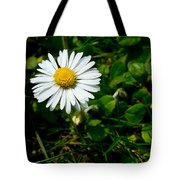 Miniature Daisy In The Grass Tote Bag